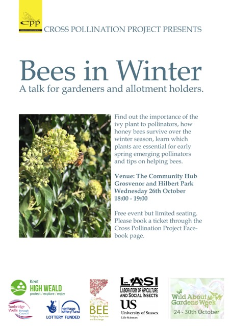 bees_in_winter