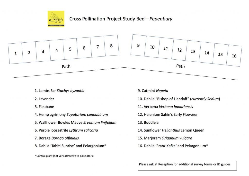 Pepenbury Bed Map
