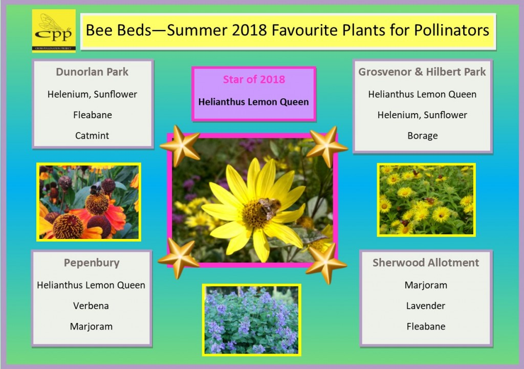 2018 fav plants